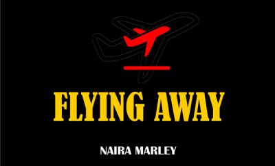 Naira Marley - Flying Away