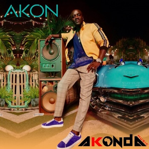 akon take your place