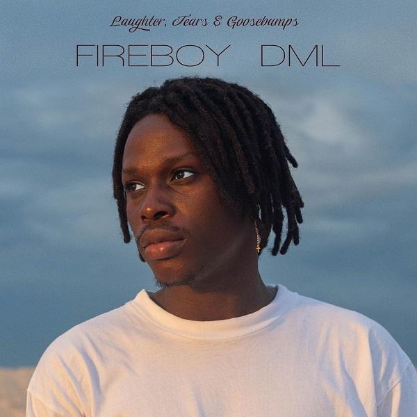 fireboy dml album